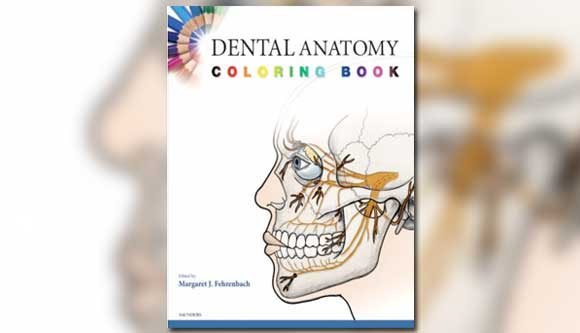 Dental Anatomy Coloring Book – Journal of Modern Dentistry